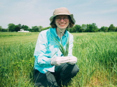 MSU's Ashley Shade in a field of switchgrass